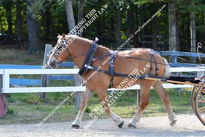 88 Derek & Ike 09-16-2012