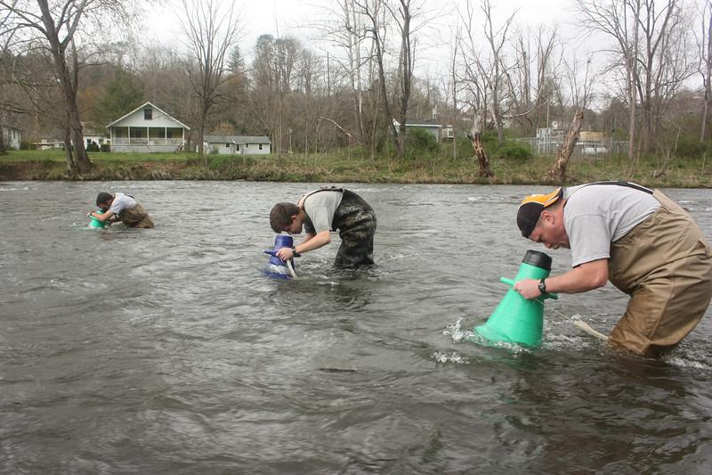 2012 03-Tuckasegee R elktoe host and mussel hunt Peeples-TR Russ Jordan Dave McHenry.jpg