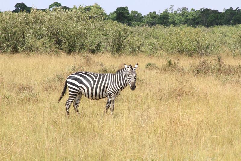 Kenya Part2 '15 832.JPG
