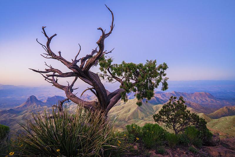 Big_Bend_National_Park_South_Rim_Chisos_View_DSC2037 2 900.jpg