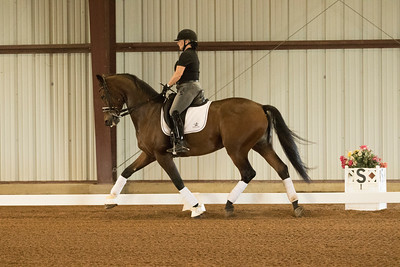 Horse 616