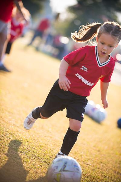 2012 Fall Spartans Soccer