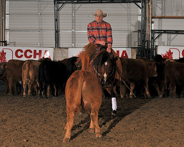 CCHA FINALS APR 2010 15NHNP