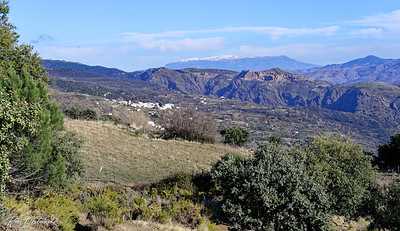 The Alpujarra