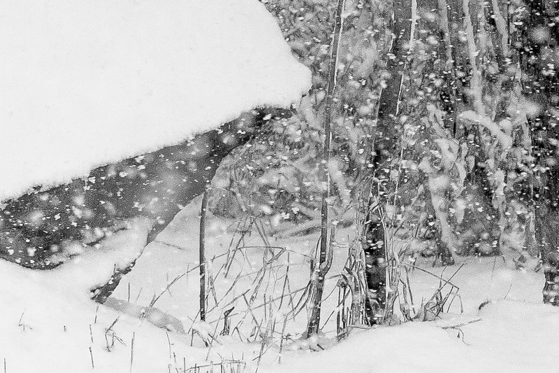 14 11 26  Mercur Hill Snow
