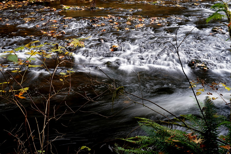Silver Falls 25.JPG