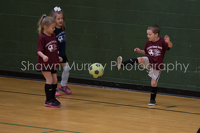 Limestone Soccer 2-15-14