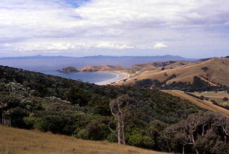 NZ_015.jpg