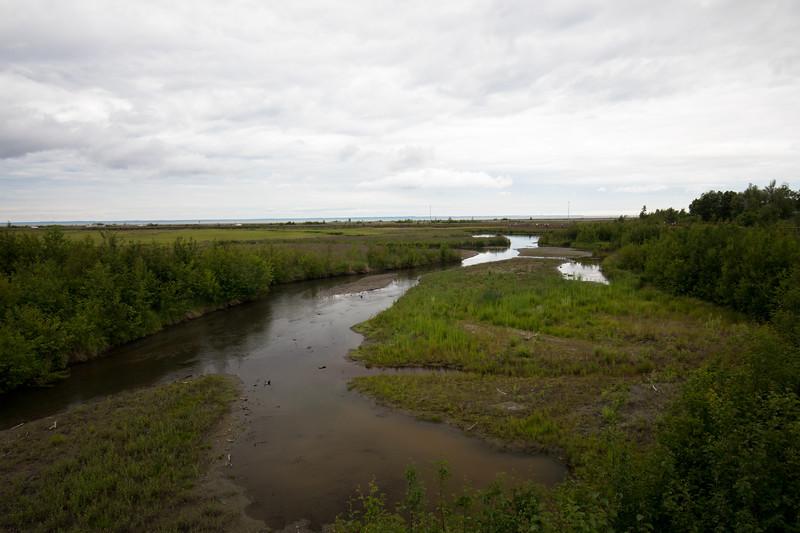 potter marsh