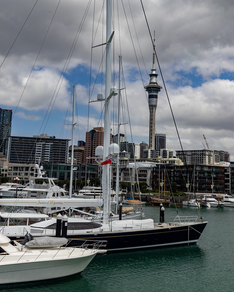 Fancy sailboats and Sky Tower