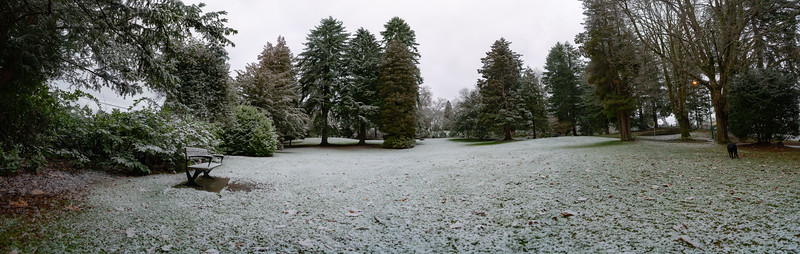 19_02_03 snow day in north van 0057-Pano.jpg
