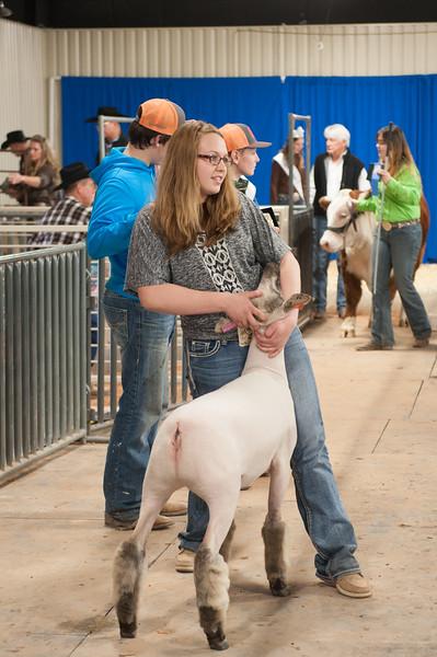 Hays County Show-9848.jpg