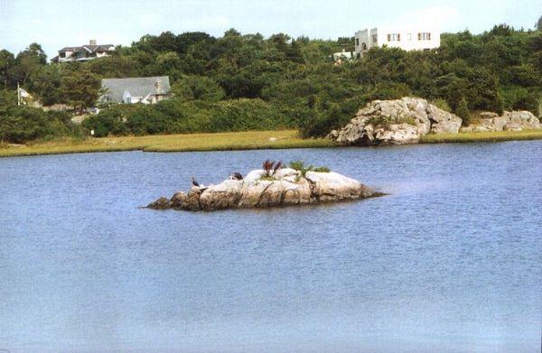 A little island.