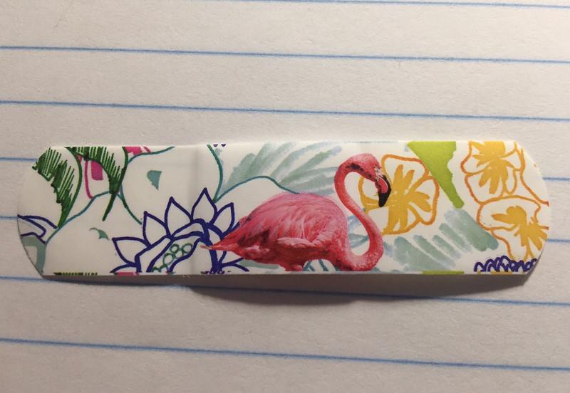 flamingo bandaid.jpg