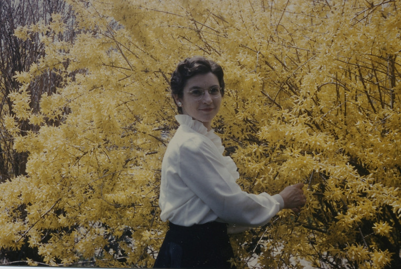 Gurleyville Ruth with Forsythia141.jpg