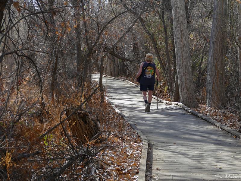 Hike at Big Morongo Canyon (18 of 28).jpg