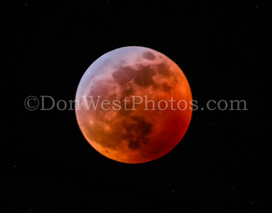 Blood Wolf Moon 2019