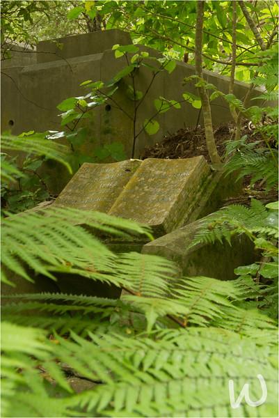 Photo Essay: Karori Cemetery