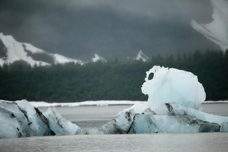 Alaska Copper River-9756.jpg