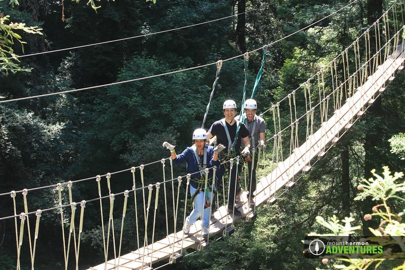 redwood_bridge_1528411463369.jpg