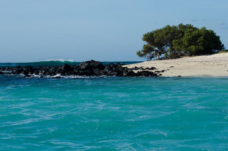 Galapagos-109.jpg