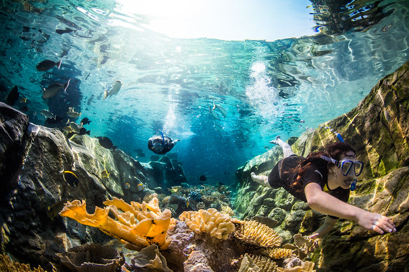 Two woman under water on a coral reef.