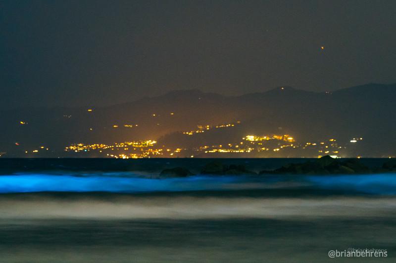 2020-05-02-bioluminescent-waves-2.jpg