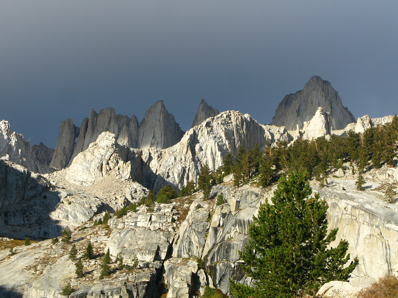 Whitney and the Needles