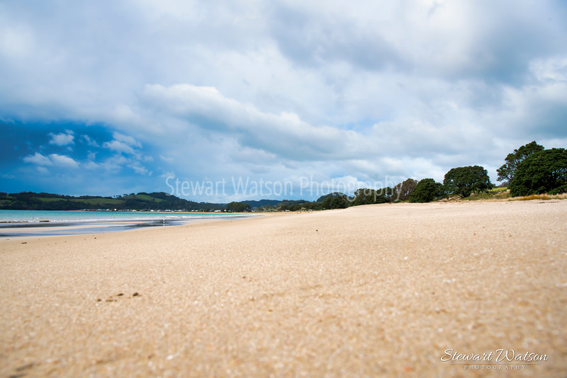 Lonely Bay, Cooks beach 04