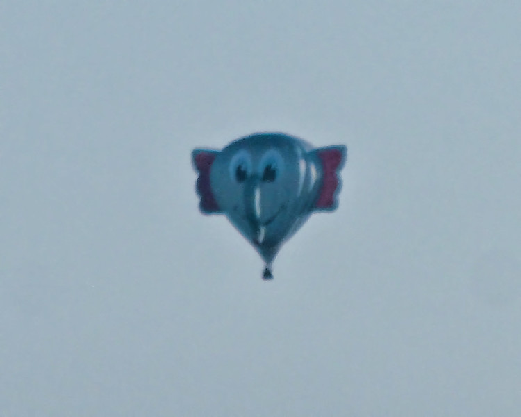 234 Michigan August 2013 - Hot Air Balloons.jpg