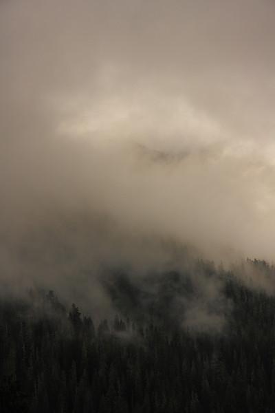 Mt.Rainier 0017.JPG
