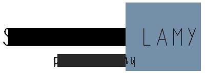 logo_20151029_v3-72dpi-400px-bleugris.png