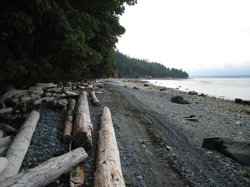 A walk on the beach on Quadra Island