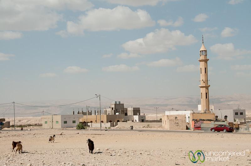 Village Life in the Dusty Area near the Dead Sea - Jordan