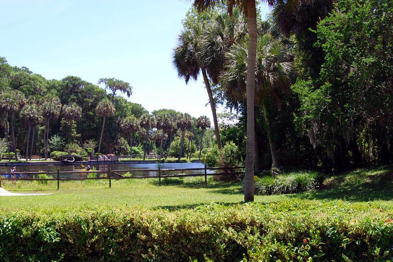 2014 Silver Springs, Florida (7).JPG