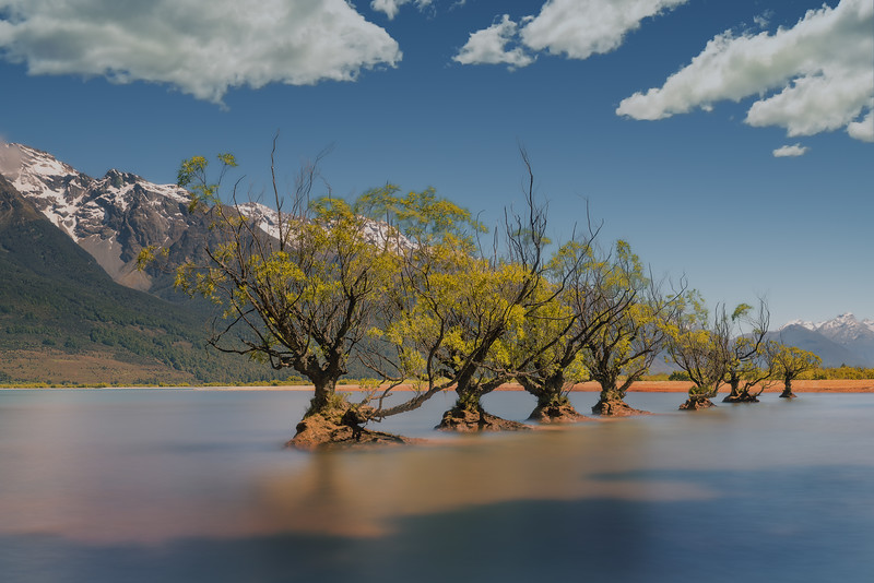 These Willows Never Weep || Glenorchy