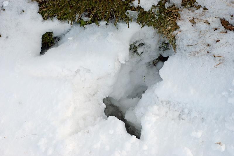 Gvendarbrunnur var hulinn snjó