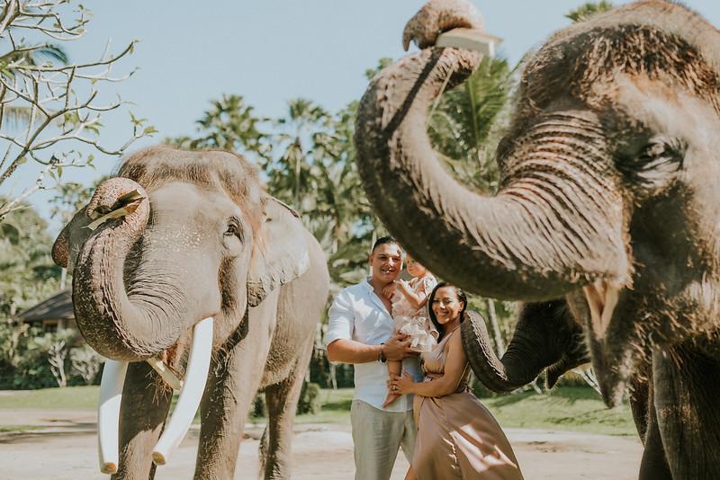 VTV_family_photoshoot_elephants_Bali_ (18).jpg