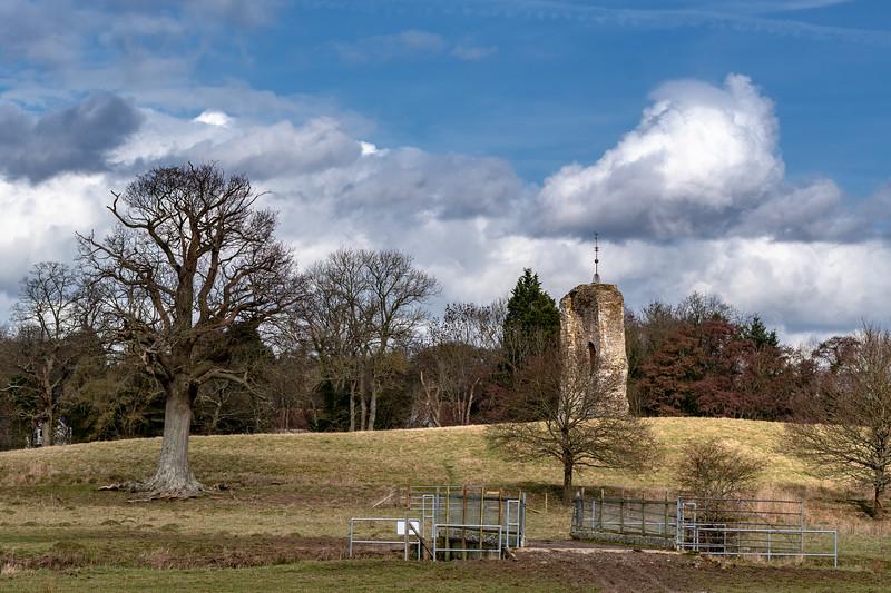 Knepp Castle Ruins-20.jpg