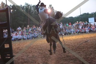 Saddle Bronc and Bareback