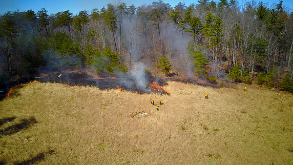 Controlled Burn Aerial Captures March 2019