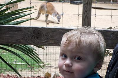 Atlanta Zoo August 2015
