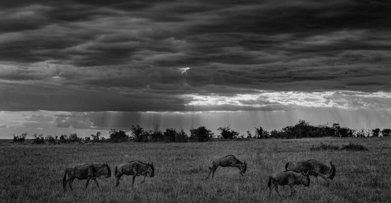 Kenya-102013-134-Edit.jpg