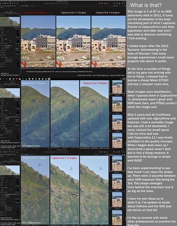 Japan - Case Study