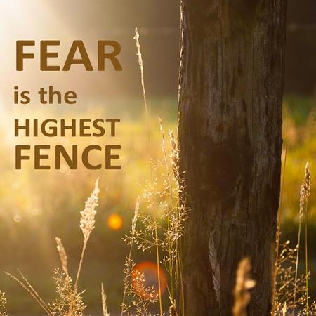Fear is the highest fence.jpg