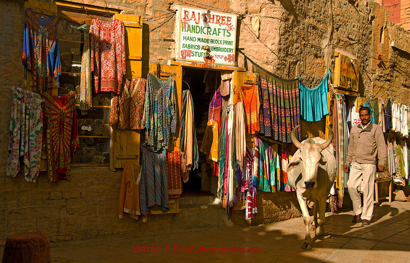 India2010-0209A-237A.jpg
