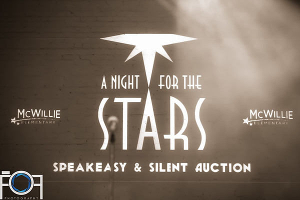 A Night For The Stars Speakeasy & Silent Auction