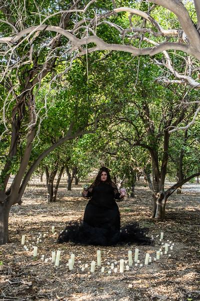 pumpkin orchard-77.jpg