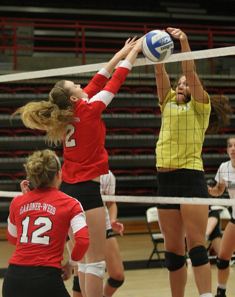Volleyball vs. Wofford