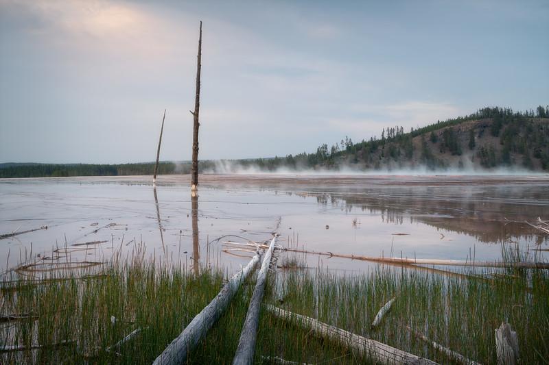 Softly Singed || Yellowstone National Park